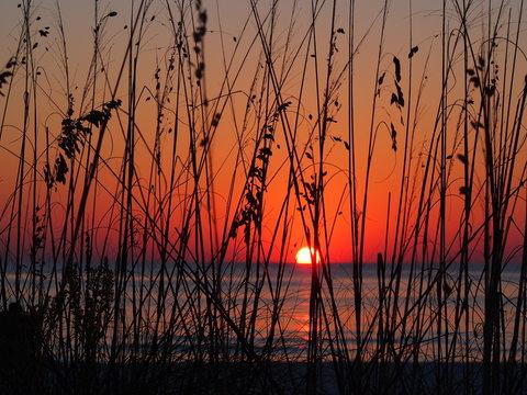 Lido Key Beach Sunset Sarasota, Fl