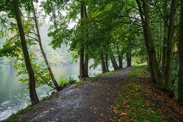 Path around Hrebikarna lake near czech city of Chomutov during autumnal rain on 9th october 2019