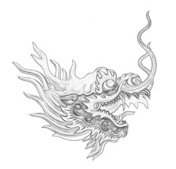 head dragon painting isolated on white background