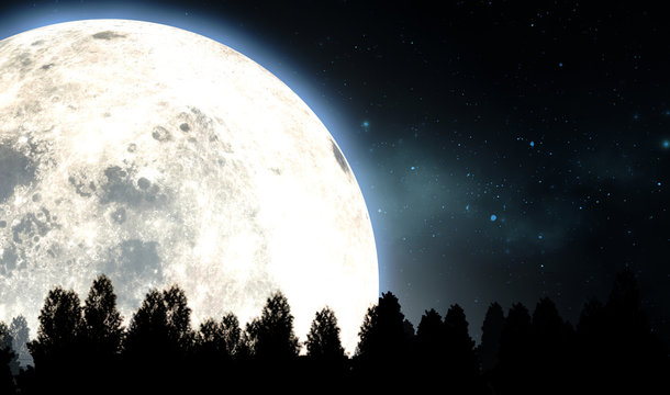 Full Moon Above The Tree Tops