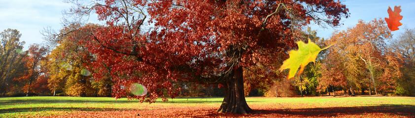 Foto auf Leinwand Violett rot Landschaft 818