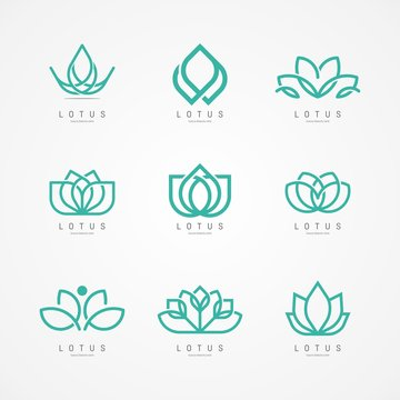 Linear lotus icon. Lotus logo vector template set design