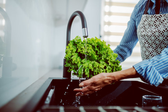 Close up of caucasian senior woman in apron washing salad in kitchen sink.