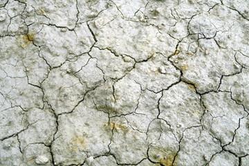 Terre sèche craquelée.