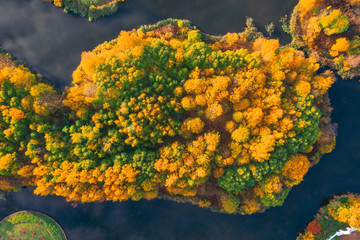 Aerial view from a height of an autumn forest on an island among a lake.