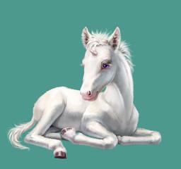 White unicorn baby lying, isolated on blue