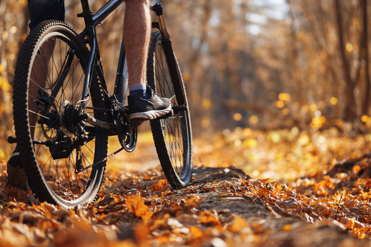 Male cyclist riding a bike in the autumn forest in warm weather. Active lifestyle