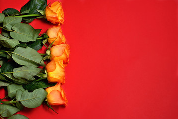Orange roses bouquet row laying on th red background with free space in the right. Beautiful romantic holiday flat lay top view closeup florist flower picture