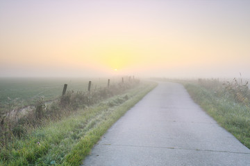 Wall Mural - road to sun at sunrise