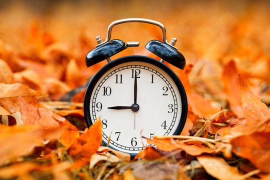 Autumn concept. Alarm clock black on a background of yellow fallen foliage. Fall season