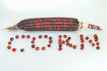 creative presentation with organic colorful corn grains
