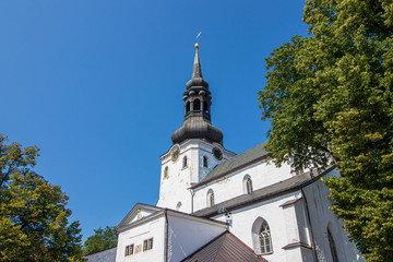 St. Mary's Cathedral in Tallinn, the capital of Estonia.