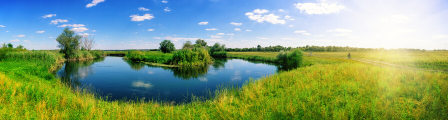 Turn of river in middle of meadow with green grass Wall mural