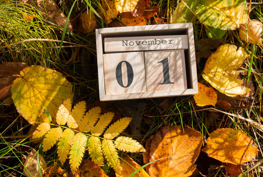 Hello November, the first of November is a calendar on the grass in autumn leaves.
