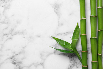 Poster de jardin Bambou Green bamboo stems on white marble background, top view. Space for text