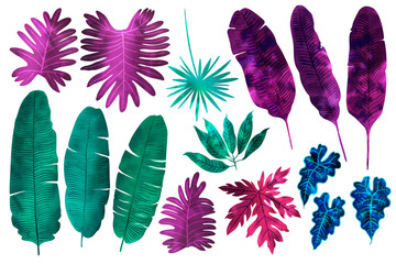 Tropical leaves neon watercolor. Ferns, fitter, fan palm. Bright pink, turquoise, blue, purple colors.