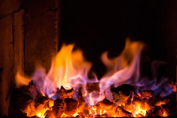 Foto op Canvas Vuur Bright fire burns on coals close-up. Carbon dioxide flies out with a blue spark.