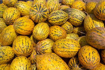 Summer tray market agriculture farm full of organic fruits. Healthy eating. Izmir / Turkey
