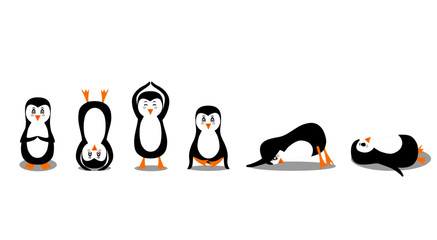 Penguin practices yoga in different asanas