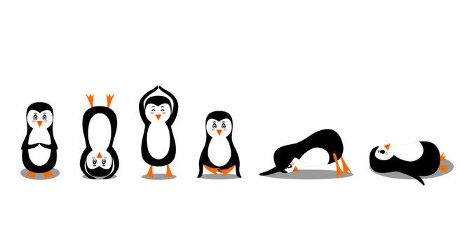 Penguin practices yoga in different asanas