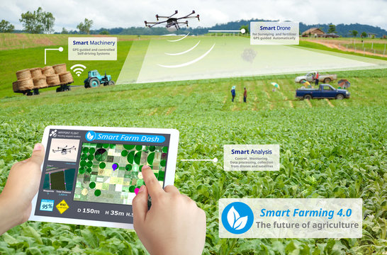 Smart farming, Hi-Tech Agriculture revolution, Drone AI automatic, Conceptual
