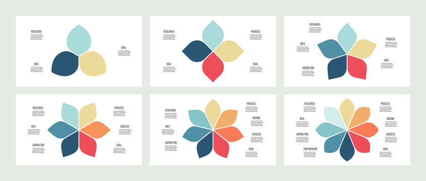 Business infographics. Flower pie charts with 3, 4, 5, 6, 7, 8 parts, options. Vector templates.