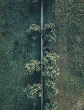 Aerial view of road passing through trees in forest