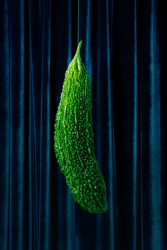 Close up of bitter melon hanging against curtain