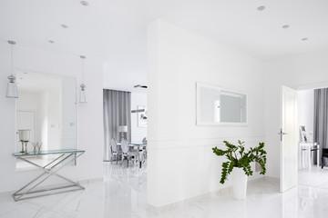 Amazing home corridor in white