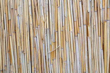 Bamboo rooftop closeup background texture with multiple straws in focus