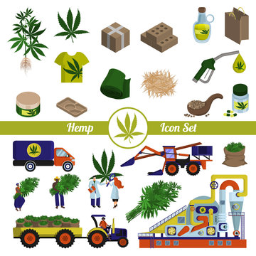 Hemp and cannabis products. Production and processing