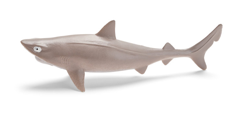 Shark Side View Toy