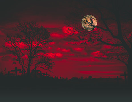 Halloween backdrop with the old grunge plank wood board and the silhouette trees with full moon and flying bats on the mystery orange blood dark cloud at night at the haunted graveyard in background.