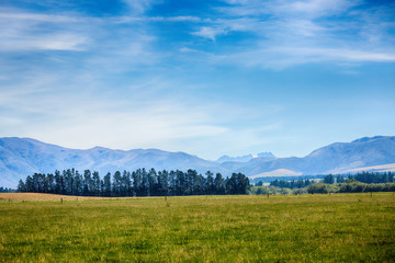 Beautiful Countryside at Farm Agriculture in South Island New Zealand