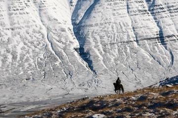 cavalier sur fond de glacier islandais