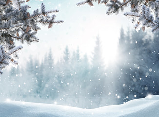 Poster Wit Beautiful winter landscape with snow covered trees.Merry Christmas and happy New Year greeting background with copy-space.