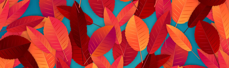 Autumn banner design concept. Background template for fall business promo. Realistic vector illustration. Fototapete