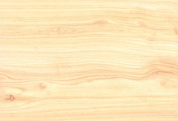 Texture of wood background closeup Hardwood maple