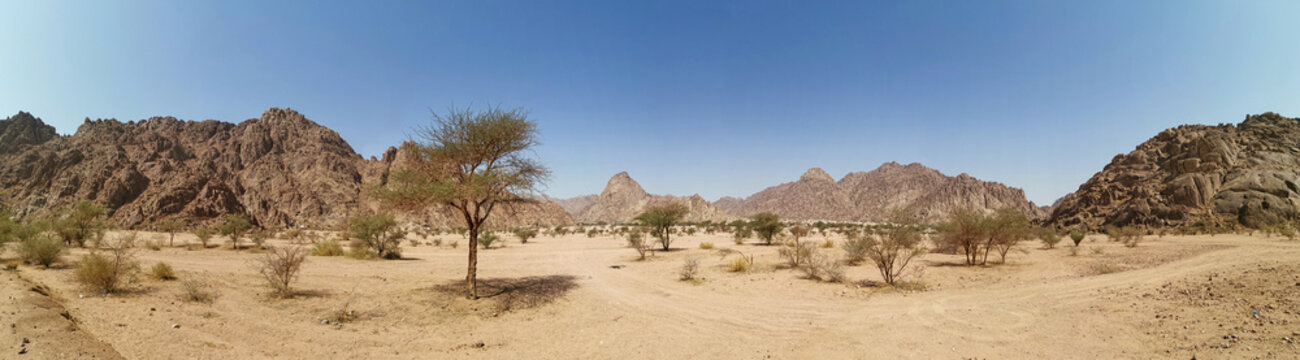 Panorama view of desert view on extreme heat weather. Travel concept