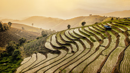 Photo sur Plexiglas Les champs de riz Aerial view of Rice fields on terraced of Bong Piang, Chiang Mai, Thailand. .