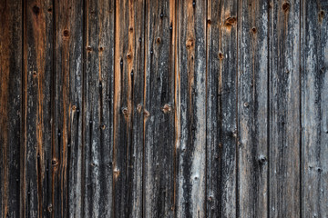 Close up texture detail on old faded and weathered castle wooden door