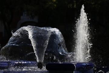 Fountain in the city of Subotica in autumn sunlight, fountain