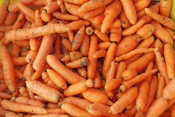 Fresh organic carrots with dirt. Carrot full frame picture. Carrots pattern. Orange food background.