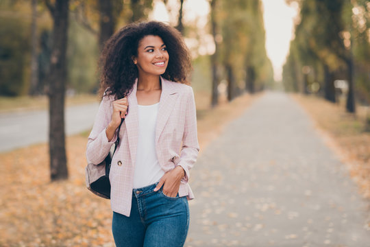 Photo of amazing pretty dark skin curly lady smiling handsome guy walking park after college lectures hold backpack warm autumn season wear jacket jeans outdoors