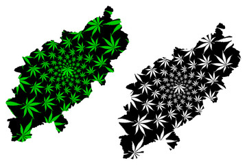 Northamptonshire (England, Non-metropolitan county, shire county) map is designed cannabis leaf green and black, County of Northampton (Northants.) map made of marijuana (marihuana,THC) foliage....