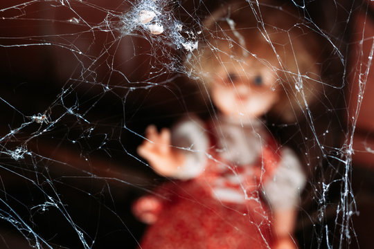Spider web with old doll out of focus in the background. Halloween concept