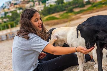 girl feeds stray dogs on a greece beach