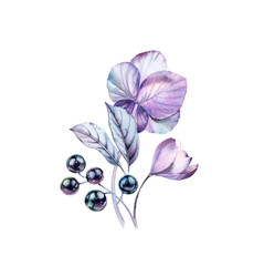 Watercolor anemones with berries made of black pearls. Hand-painted realistic botanical floral illustration. Purple bouquet isolated on white for wedding stationery design, card printing, banners