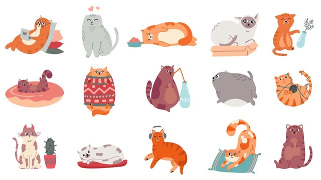 Cute cats. Funny cat in box, adorable sleeping kitty and fat cat in sweater vector illustration set. Domestic kitten lifestyle. Humorous pet working on laptop, doing yoga, listening to music stickers