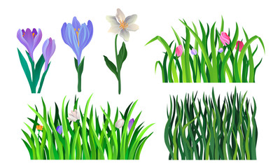 Grass And Flower Elements For Decoration. Vector Illustrated Set